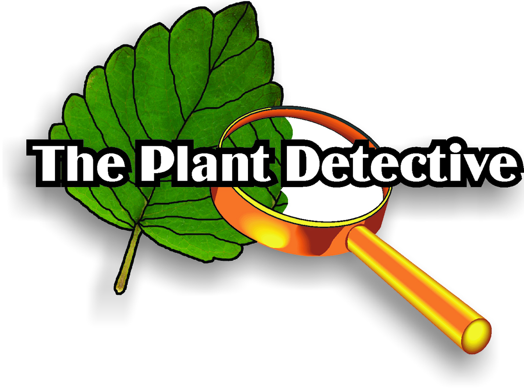 Plant Detective The Mtpr