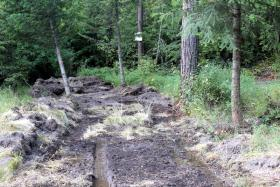 Bulldozed fire line in upper Sleeman Gulch