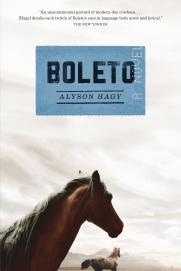 Boleto, a novel by Alyson Hagy