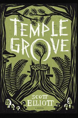 Temple Grove, a novel by Scott Elliott