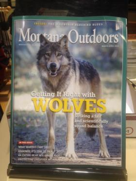 "A wolf is featured on the latest issue of the Montana Fish, Wildlife, and Parks magazine, ""Montana Outdoors."""