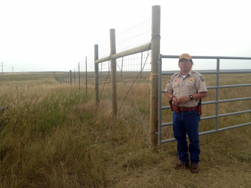 Fort Belknap tribal Fish, Wildlife and Buffalo Program Director Mark Azure stands next to the fence surrounding the tribes' herd of Yellowstone bison. Azure argues it's as restrictive as any in the state