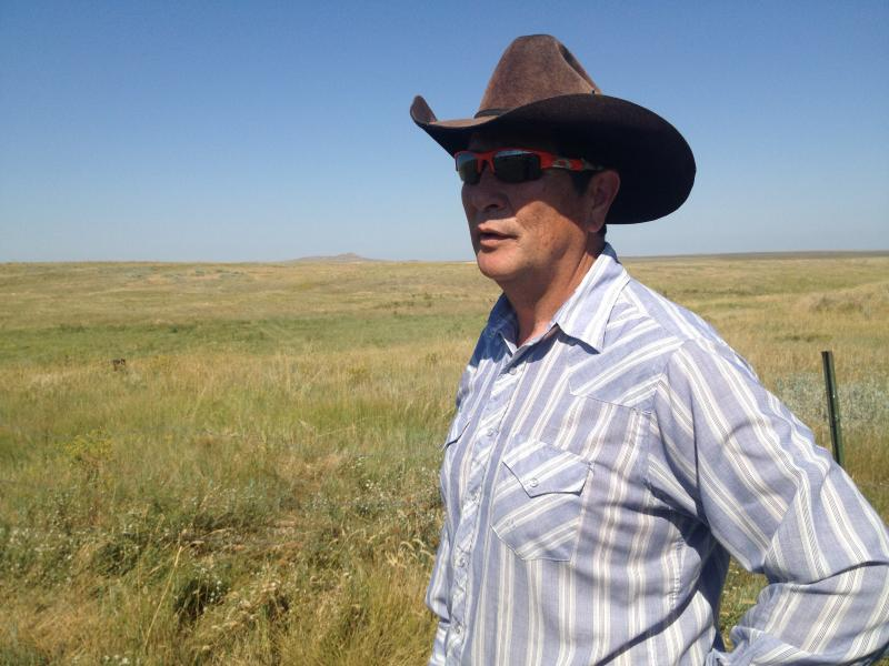 Adjacent rancher Mike McCabe is concerned Ft. Belknap's bison will escape from their enclosure when hungry. The tribe does not plan to feed the bison for the first year, hoping they will live off grasses already in their pasture.