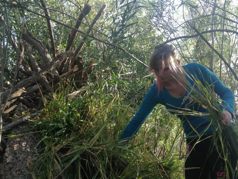 PAL Senior Mittzy Guillemette layers grasses onto the girls' shelter