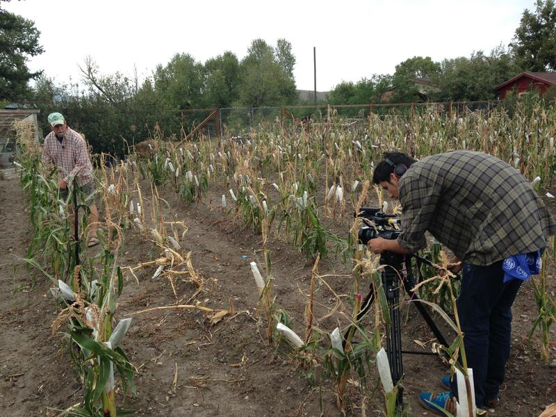 Sergio Gonzalez films Big Timber corn farmer Dave Christensen