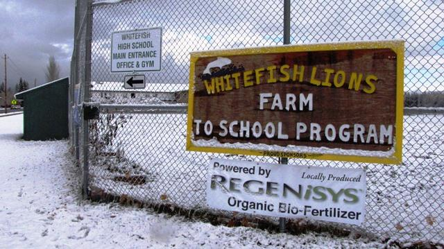 The Whitefish School garden sits on a converted baseball diamond.