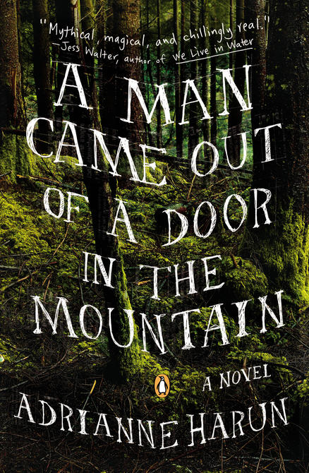 A Man Came Out of a Door in the Mountain, a novel by Adrianne Harun