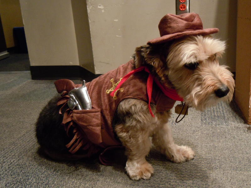 Sheriff Teddy