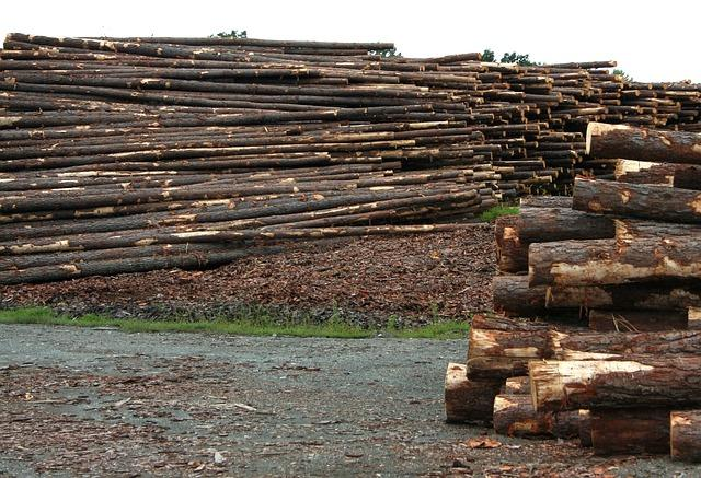 Weyerhaeuser closed its lumber and plywood mills in Columbia Falls last week.