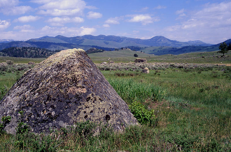 Glacial erratic in Yellowstone Park's Lamar Valley