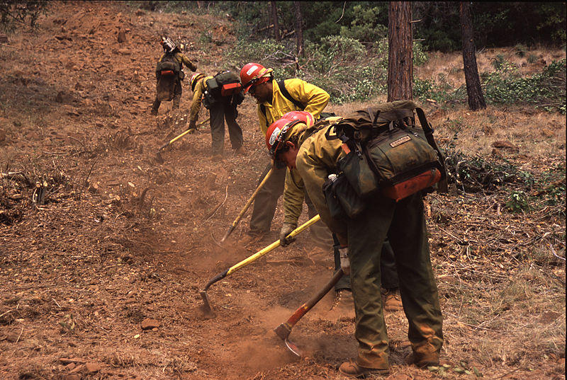 Fire fighters building fire line.