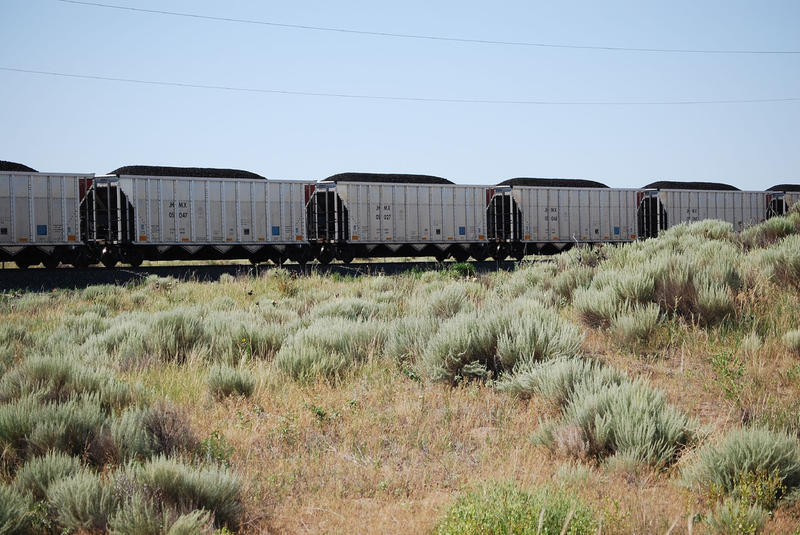 Montana Activists Rally Against Coal Trains