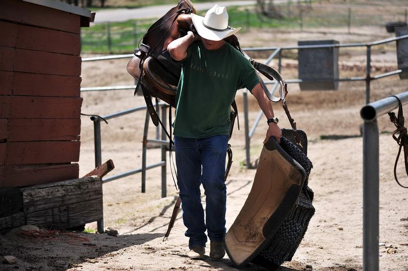 Cowboy (File photo)