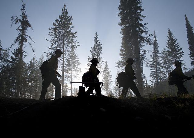 Montana Firefighters Narrowly Escape Flames, Bear