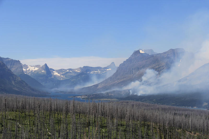 The Reynolds Creek Fire in Glacier Park has burned 4,000 acres since Tuesday July 21.