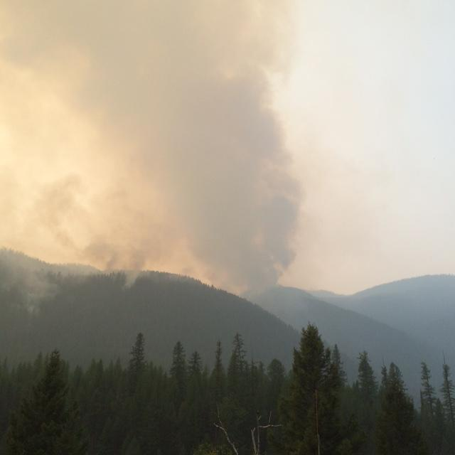 A view of the Sheep Fire on the afternoon of Thursday August, 27.