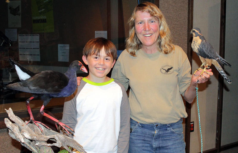 Owen Manning with his award winning Pukeko, and Kate Davis with Sonora, an Aplomato Falcon. A Pukeko is a bird from New Zealand. The name is a Maori word for purple swamp hen.