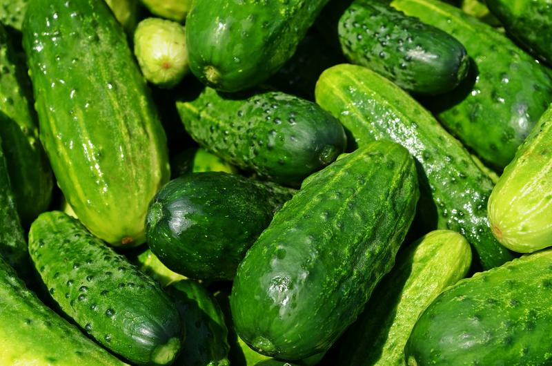 At least eleven people in eight Montana counties have tested positive for salmonella poisoning believed to be linked to cucumbers.