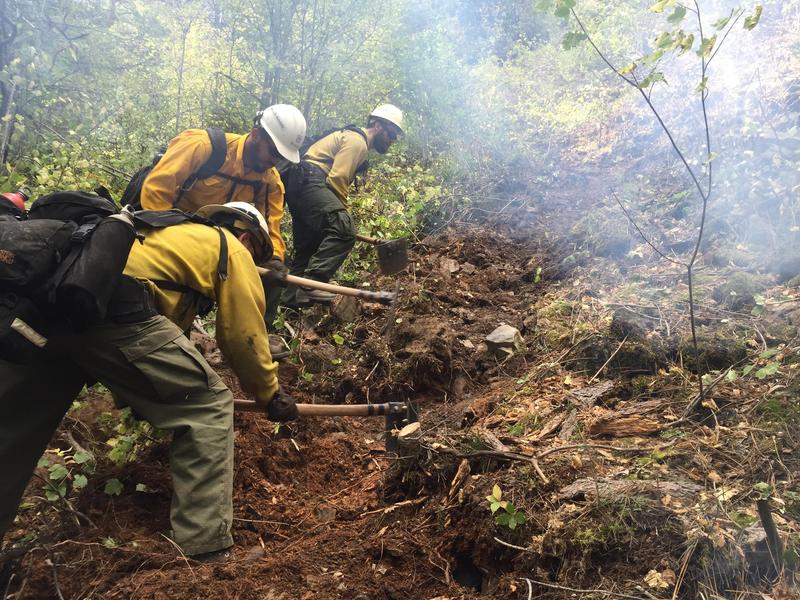 Wildland Firefighters working on fire line on the West Fork Fish Creek Fire in 2015.