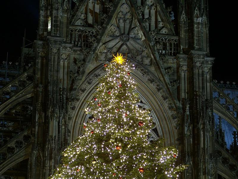 Christmas tree in front of the cathedral of Cologne.