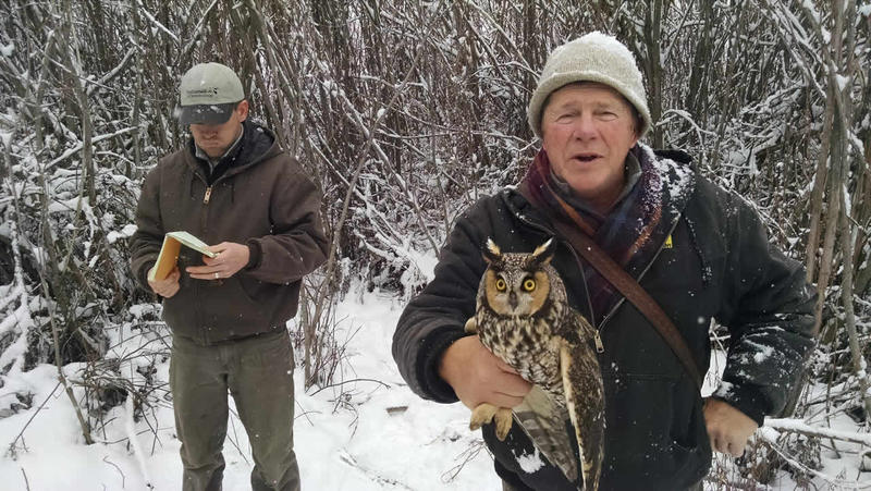 Matt Larson and Denver Holt with a Long-eared Owl captured near Missoula during one of their research outings.
