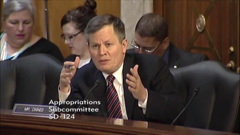 Sen. Steve Daines speaks during an appropriations subcommittee hearing.