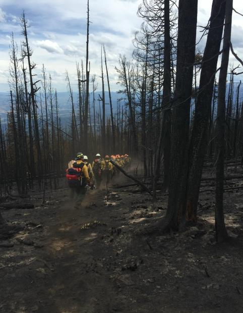 The Zig Zag Hotshot crew hikes through a heavily burned area on the northwest part of the Observation Fire on July 8, 2016.