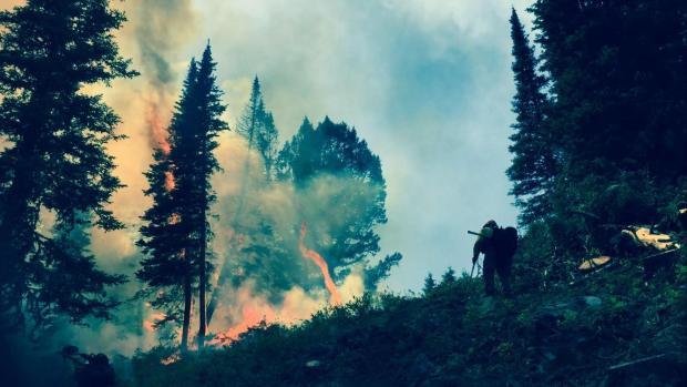 Burnout operations for the Blue Lake Fire on July 24, 2016