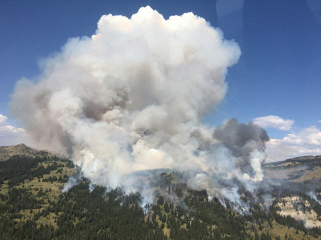 The Fawn Fire in Yellowstone National Park on August 6, 2016