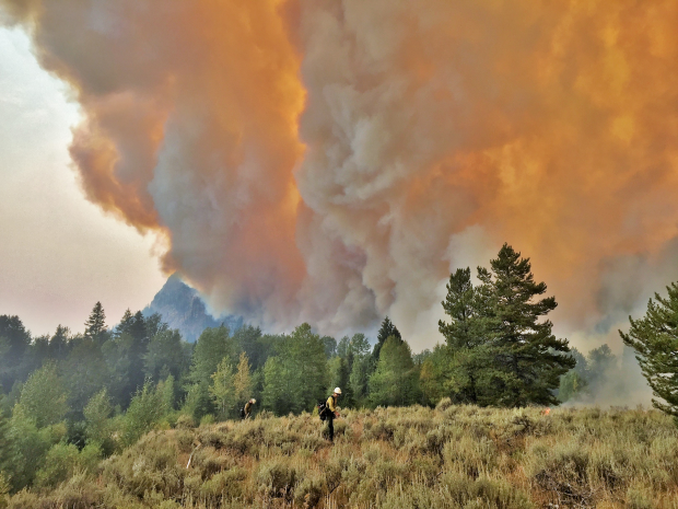 The Berry Fire in Wyoming has caused Yellowstone National Park to close their southern entrance. Photograph taken on August 23, 2016.