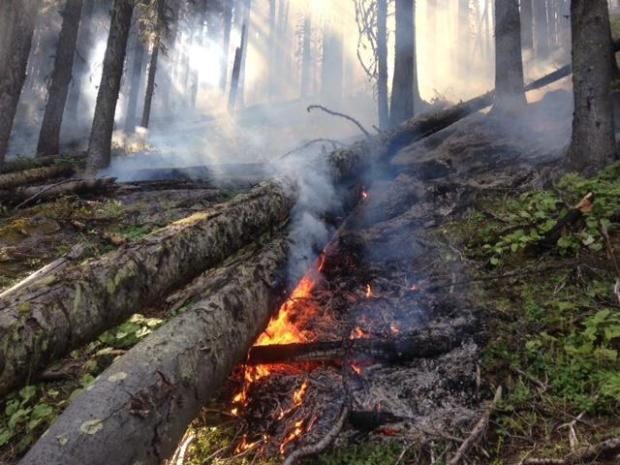 Last year's Copper King fire burned more than 27,000 acres outside Thompson Falls