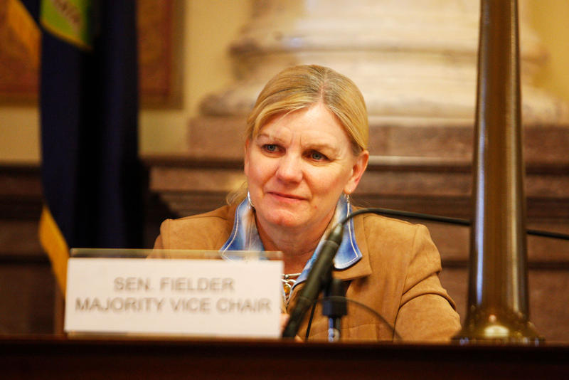 Senator Jennifer Fielder (R) SD-7.