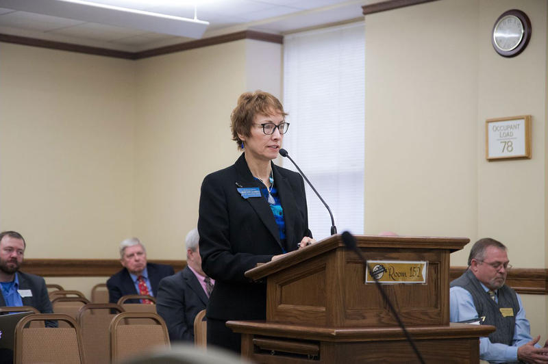 Rep. Mary Ann Dunwell testifies on a bill at the Montana Legislature.