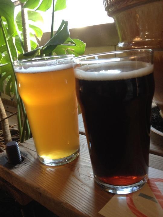 Delicious Montana craft beers
