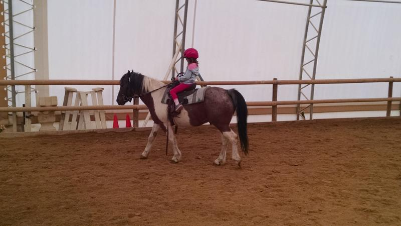 Crockett the pony with Addy as rider