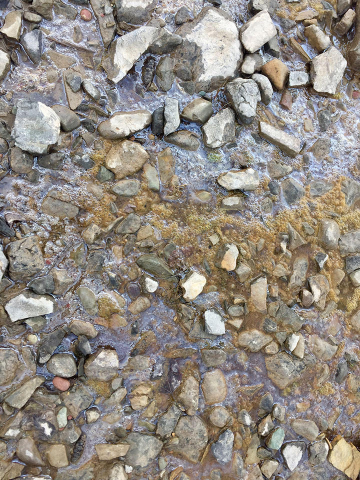 The sheen on Flathead Lake near Somers was first reported to the EPA earlier this week. Thursday, BNSF took steps to contain it. A BNSF representative told MTPR Thursday that early field indicators suggest the sheen comes from a natural organic source.