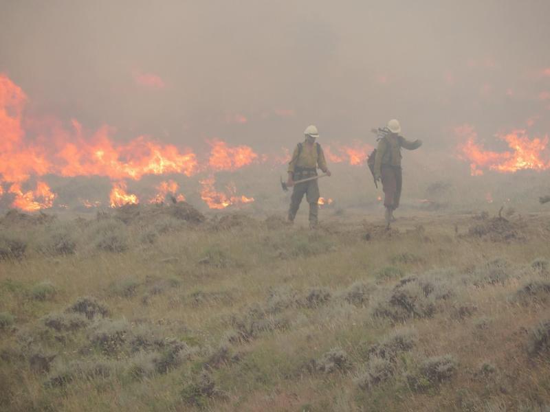 Firefighters near Zortman on July 5