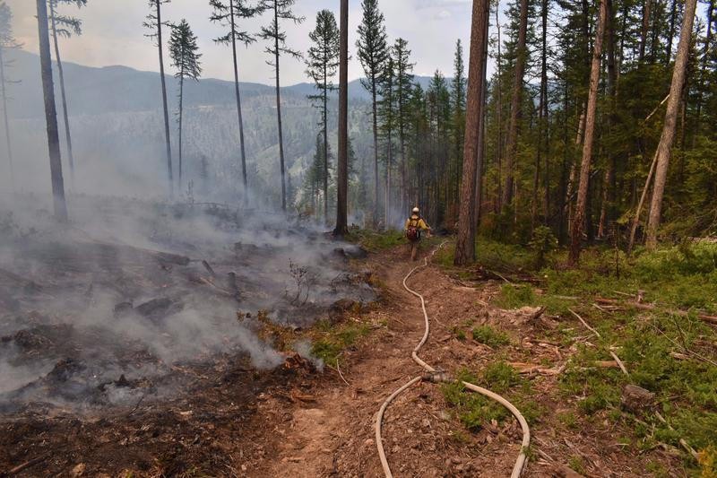 A member of the Flathead Hotshots walks the fire line at the edge of a prescribed burn near Lakeside this spring