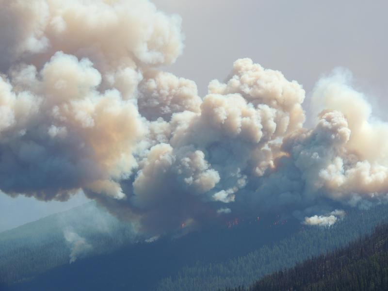 Rice Ridge Fire near Seeley Lake