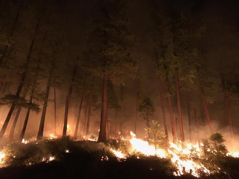 Gibralter Ridge fire