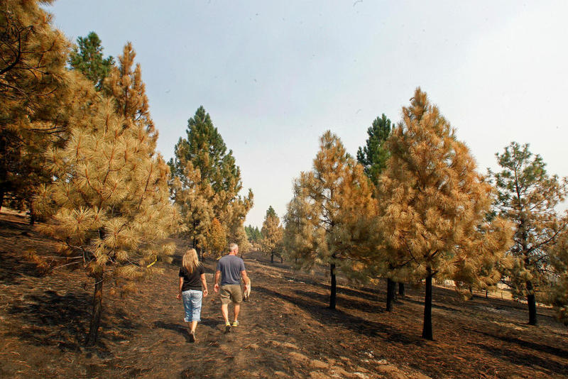 Michelle and Dan Schurg walk through their Florence area neighborhood in the aftermath of the Lolo Peak Fire, September 2017.