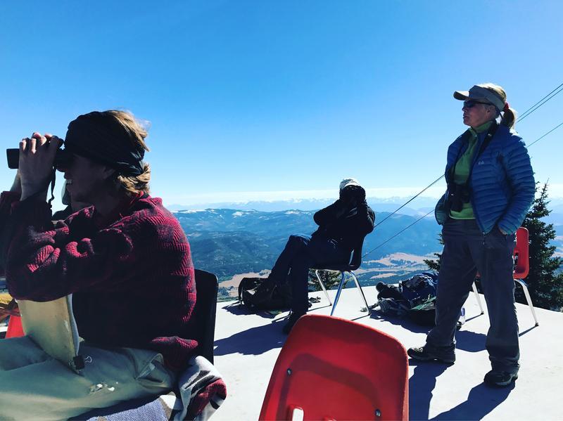From left: Bret Davis, John Parker and Paulette Epple look for raptors atop Bridger Bowl near Bozeman.