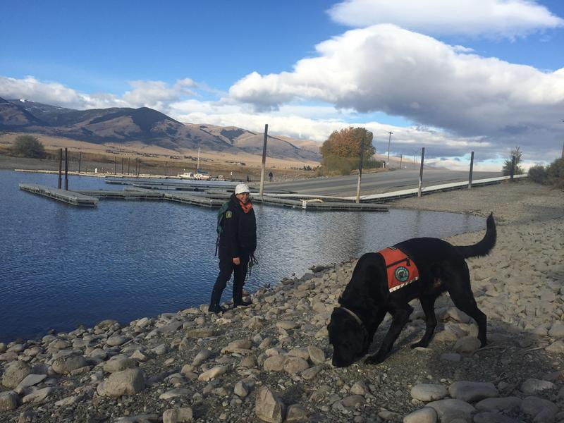 Black lab Hilo and his handler, Cindy Sawchuk.