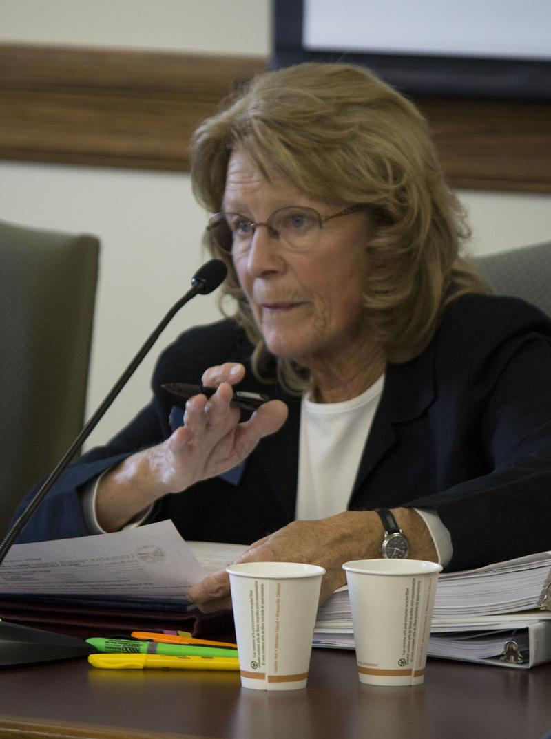 Hamilton Republican Nancy Ballance chairs the Legislative Finance Committee
