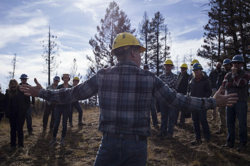 The Southwestern Crown Collaborative visits a burn site from the Rice Ridge Fire near Seeley Lake.