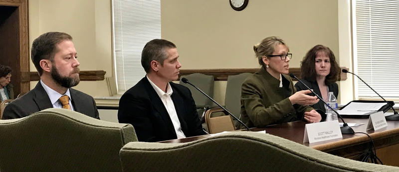 Todd Lovshin, VP/MT Regional Director, PacificSource, Scott Malloy, Senior Program Officer, Montana Healthcare Foundation, Dr. Monica Berner, Pres., BCBS Montana, Pam Palagi, V.P.of Finance, St. James Healthcare, Butte, testifying Jan. 17, 2017.