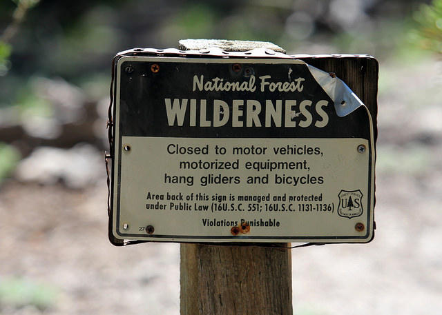 National Forest Wilderness Sign