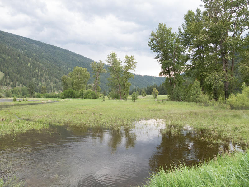 Flooding along Rock Creek, a tributary of the Clark Fork River, near Clinton, MT, June 4, 2017.