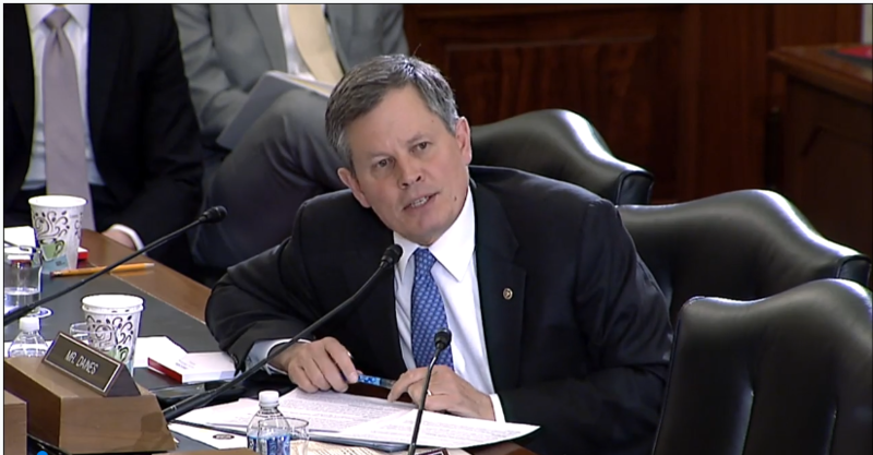 Montana Senator Steve Daines at a Senate Agriculture, Nutrition and Forestry Committee meeting Tuesday