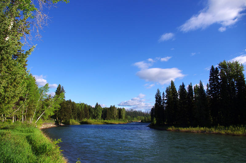 View Of The North Fork of The Flathead River Near Ford Cabin.